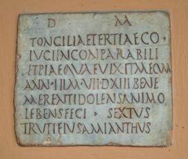 Bologna Museum1